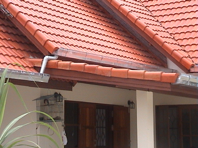 Are Your Roof Gutters Costing You Money?